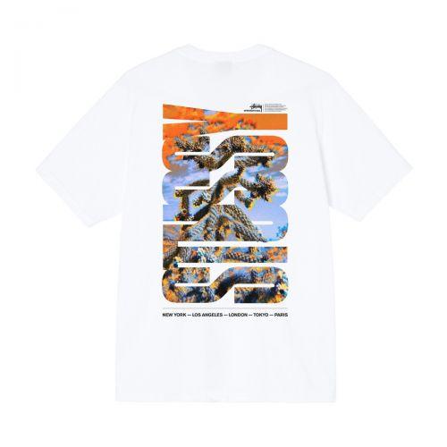 stussy desert sky tee man t-shirt 1904706